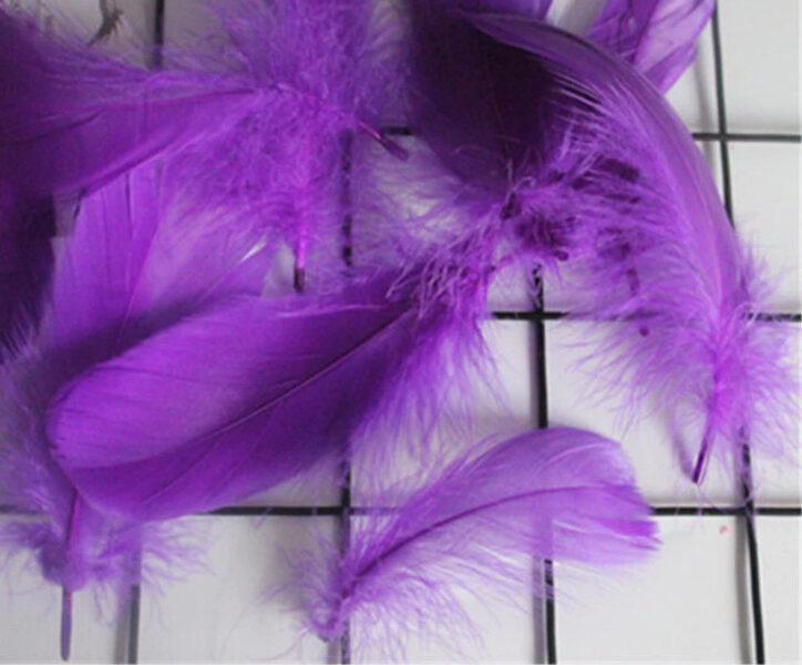 Decor color feather, purple 50 ptc.