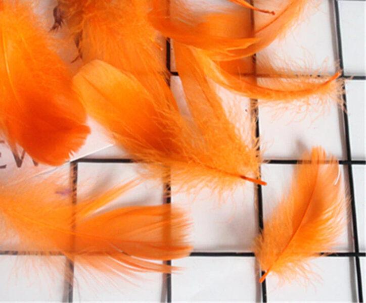 Decor color feather, orange 50 ptc.