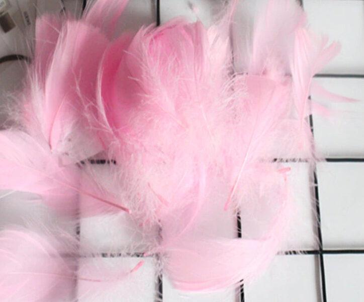 Decor color feather, light pink 50 ptc.