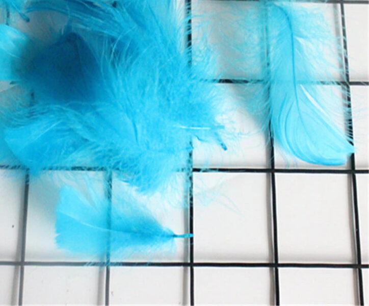 Decor color feather, light blue 50 ptc.