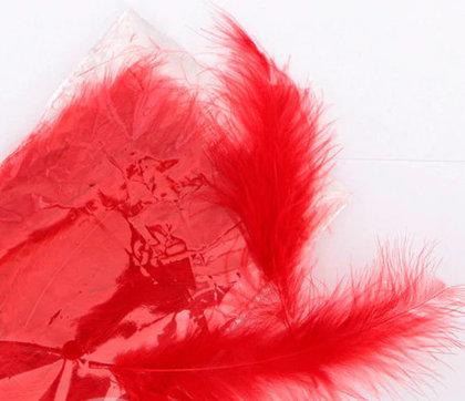 Dekors spalvas, sarkanas 25 gab