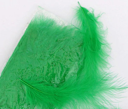 Decor color feather, green 25 ptc.
